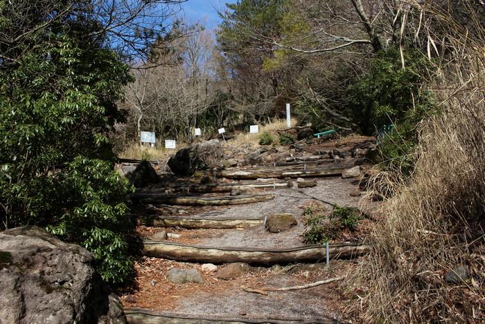由布岳 登山道