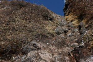 西峰 登山道
