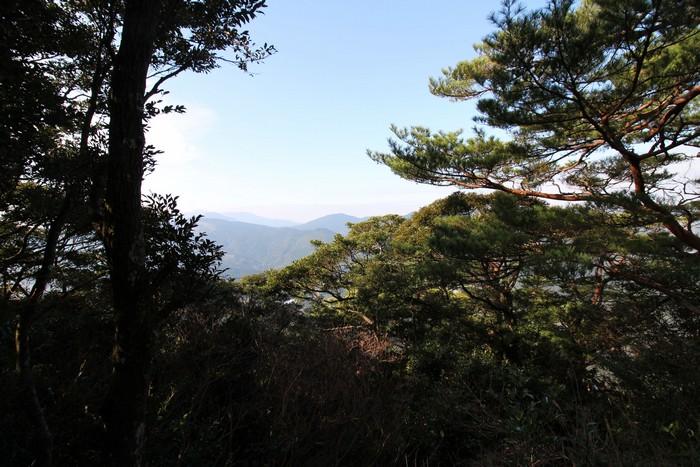 山頂 景色