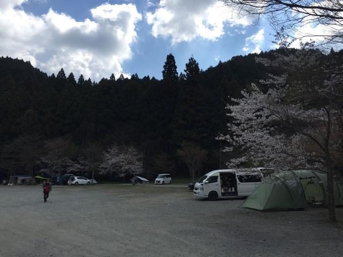 桜の見えるキャンプ場