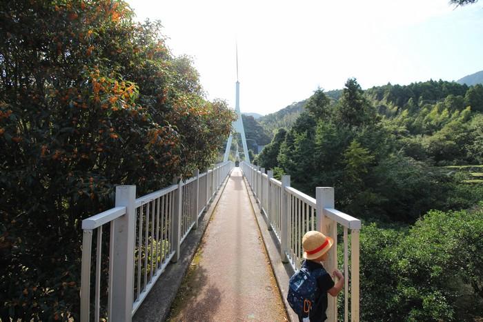 ゆらりんこ橋