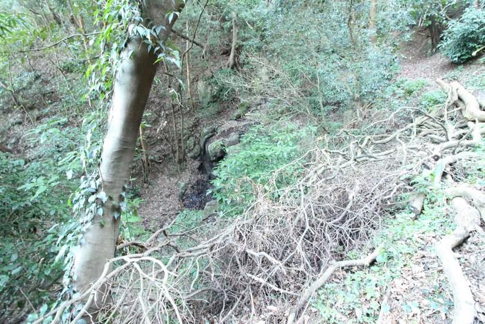 修研坊の滝2