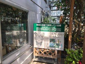 第2・第3温室