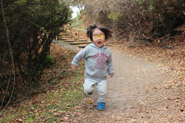 鶴見岳 走る 息子