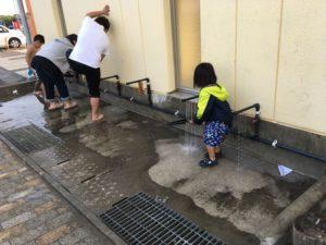 マテほり 長井浜