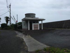 マテ貝 簑島