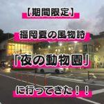 【夏限定】福岡市動物園の期間限定で開催される夜の動物園に行ってきた!夜限定のサービスあり