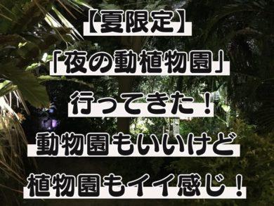 夜の動植物園 アイキャッチ