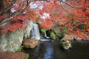 渓石園 滝 紅葉