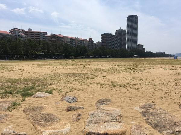 マリナタウン海浜公園