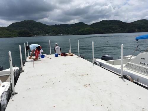 田島 釣り場