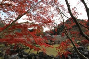 渓石園 紅葉