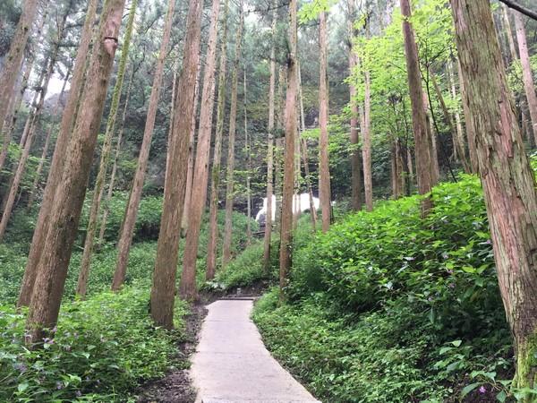 上色見熊野座神社