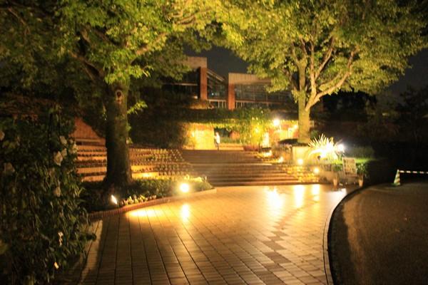 綺麗な植物園