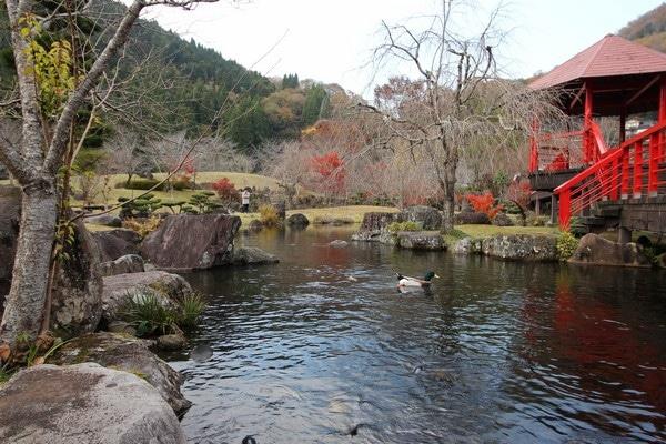 渓石園 池