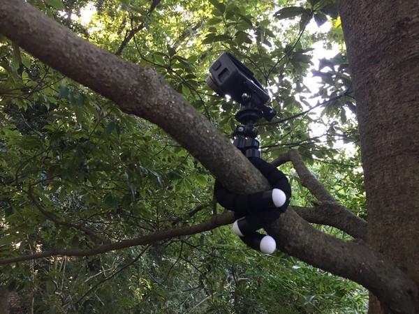 アクションカメラ マウント