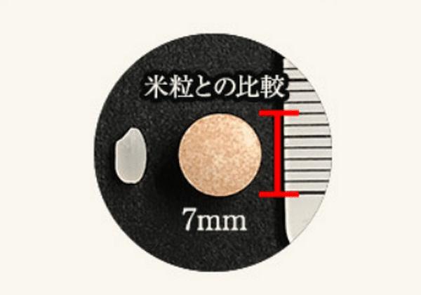 米粒との比較