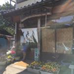 【糸島フード】地元で愛されている名物「ひなたうどん」食べてきた