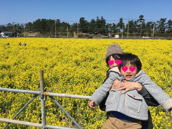 福ふくの里 菜の花畑